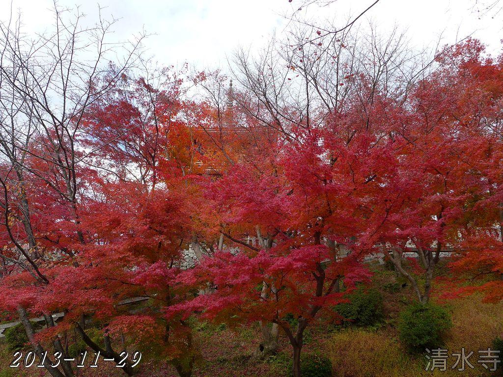 2013-11-29_13-23-02_P_pad