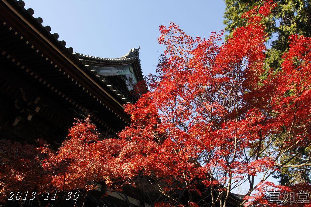 2013-11-30_09-19-34_C_pad