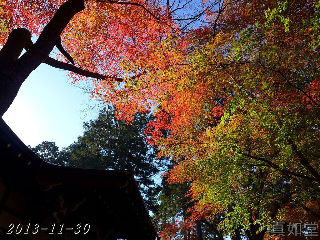 2013-11-30_09-01-34_P_pad