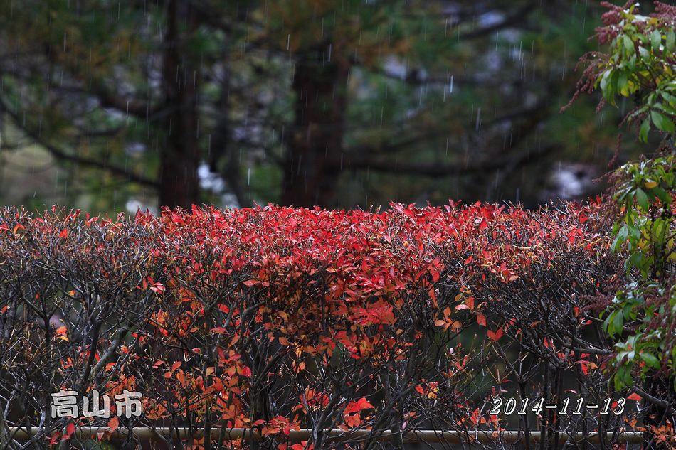 2014-11-13_14-23-14_C_pixnet