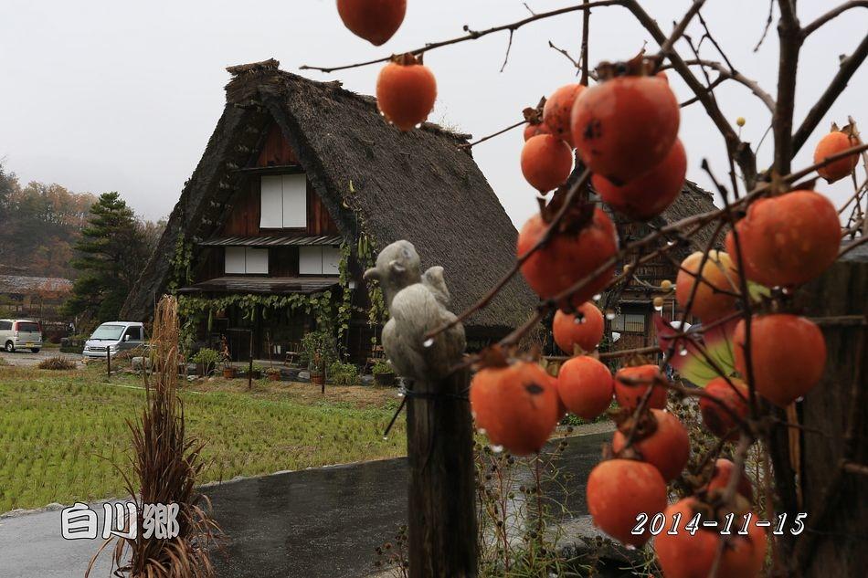 2014-11-15_09-29-51_C_pixnet