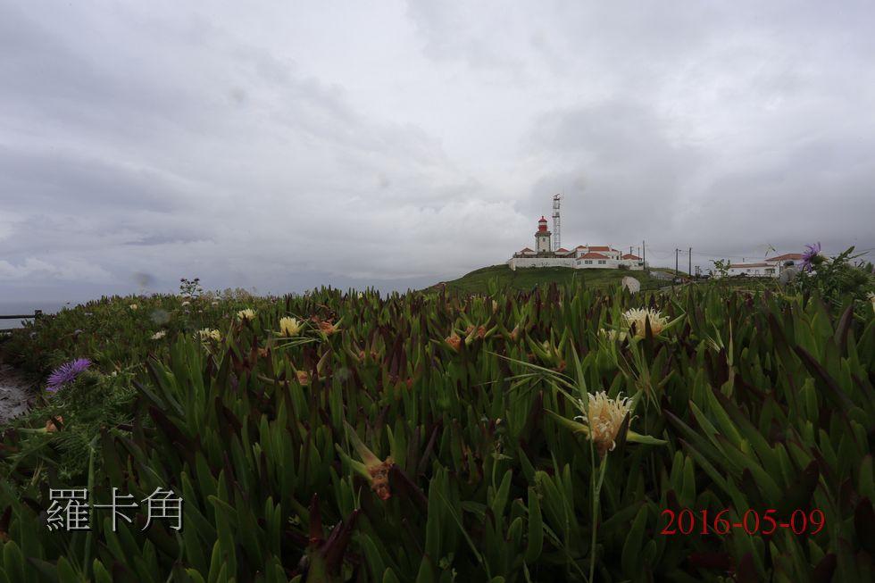 xn_2016-05-09_12-24-28C.JPG