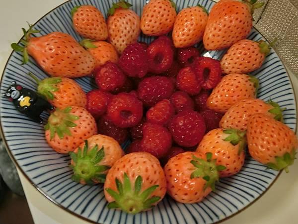 白草莓和蔓越莓