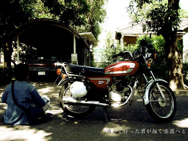 野狼SY125M