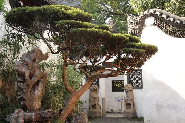 御園8 Yuyuan Garden h .jpg
