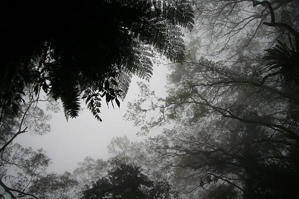 1 棲蘭山莊1a.jpg