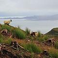 59.  Isle of Skye.jpg