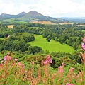 68. Eildon Hills where Tom the Rhymer allegedly disappeared in the woods to join the fairy queen.jpg