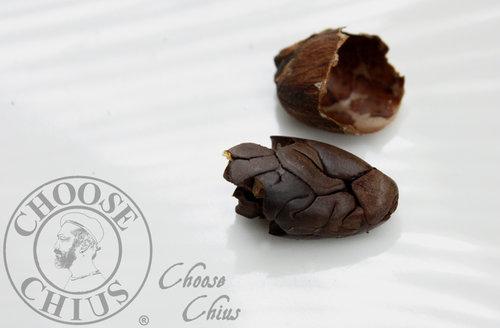 Cacao bean 可可豆