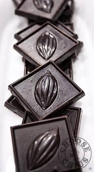 生質巧克力 Raw Chocolate