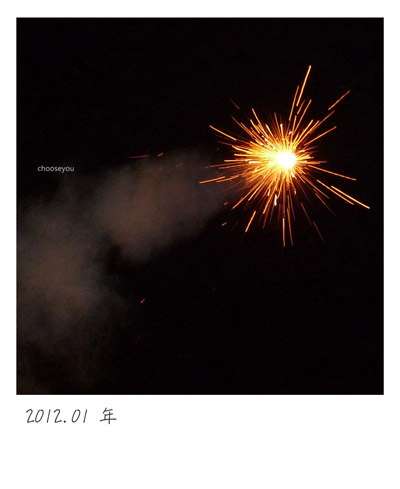 2012-01-年夜菜-085.jpg