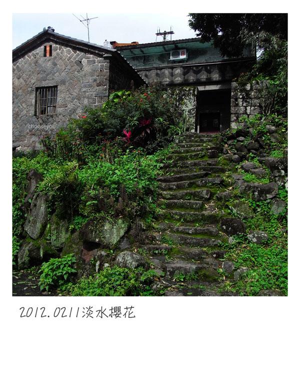 2012-02-11-淡水櫻花健行-069.jpg