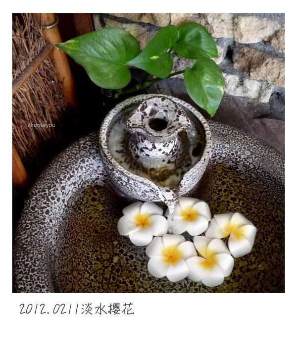 2012-02-12-北投櫻花-003.jpg