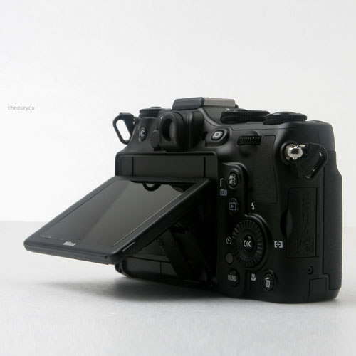 2012-0216-NIKON-P7100-008
