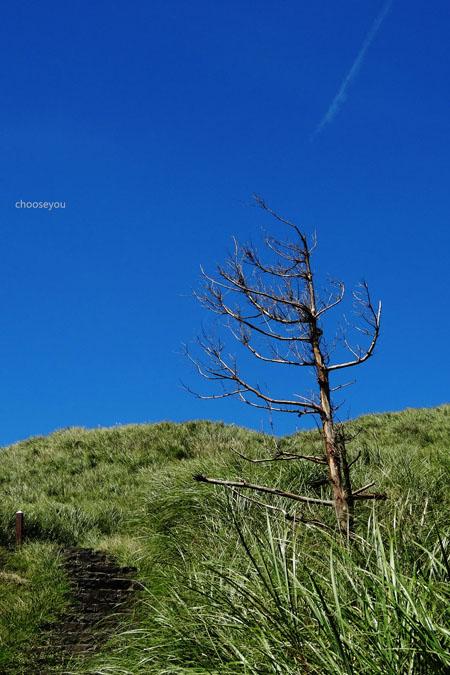 2012-0819-七星山+夢幻湖+牛奶湖-028