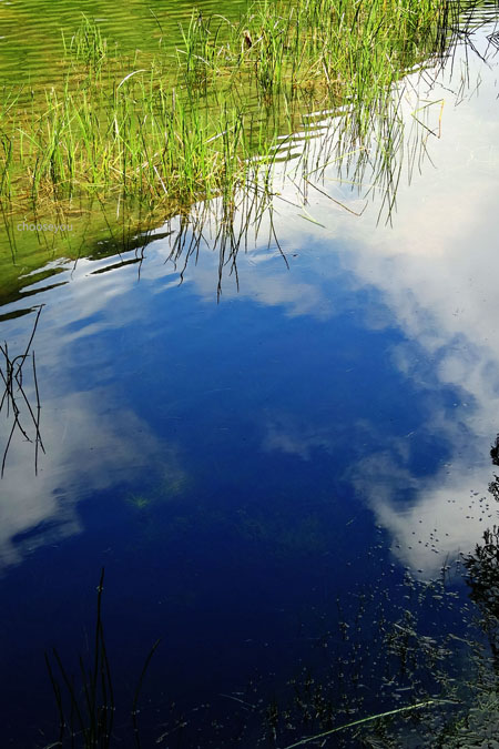 2012-0819-七星山+夢幻湖+牛奶湖-040