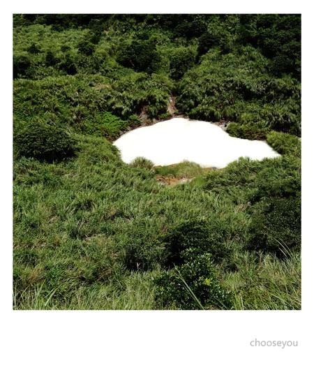 2012-0819-七星山+夢幻湖+牛奶湖-059