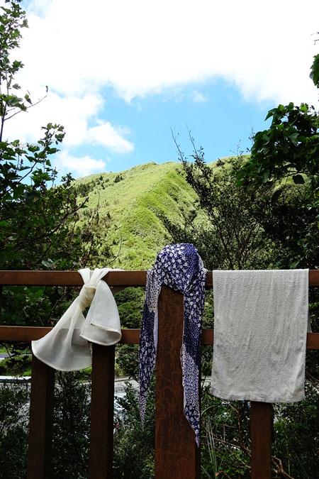 2012-0819-七星山+夢幻湖+牛奶湖-062