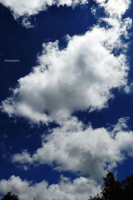 2012-0819-七星山+夢幻湖+牛奶湖-064