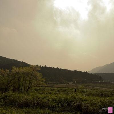 2011-03-20-竹子湖海芋季-B003.jpg