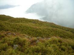 奇萊山2.jpg