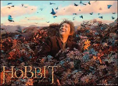 TheHobbit_TheDesolationofSmaug-Bilbo_zps3ab8dd88
