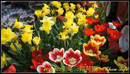 11田尾公路花園.JPG