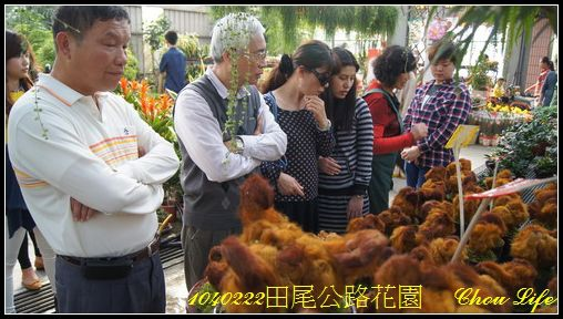 12田尾公路花園.JPG