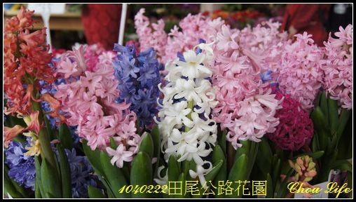 14田尾公路花園.JPG
