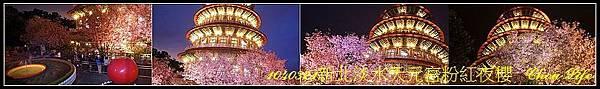 01淡水天元宮粉紅夜櫻.jpg