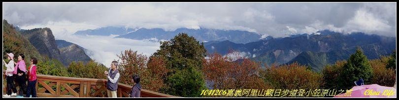 01阿里山觀日步道之旅.jpg