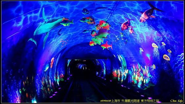 08上海東方明珠.jpg