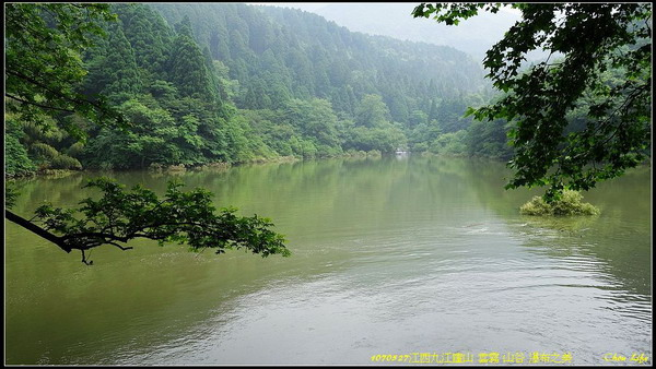 38廬山 瀑布 三寶樹.jpg