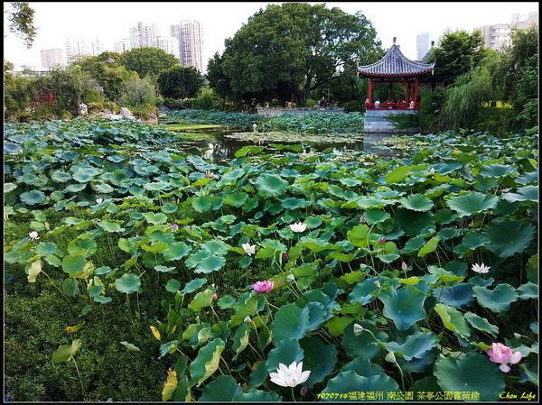 03福州 南公園.jpg
