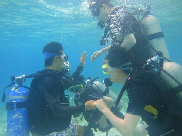 接著在水中進行簡單的潛水訓練(因為我不黯水性,所以會不由自主的往上浮)