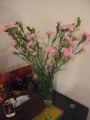 老公送我的母親節花束