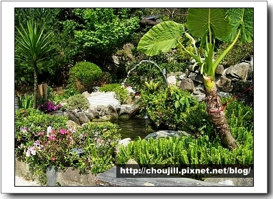花岩山林美麗的園區造景