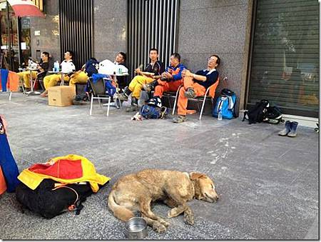 高雄氣爆災後搜救犬拼命找尋生命跡象高雄氣爆造成嚴重傷亡搜救單位和搜救犬全力搜尋高雄氣爆的災後現場讓搜救犬也搜尋到累了