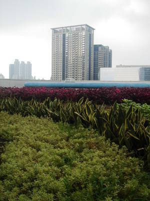 新竹租屋族網--營造空中花園 新北力推綠能屋