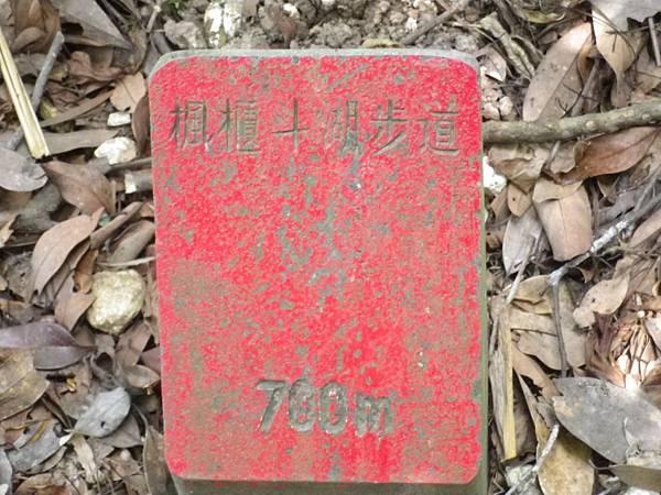 IMGP4948