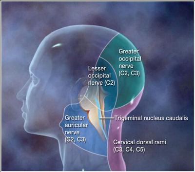 cervicogenic-vertigo-21129326.jpg