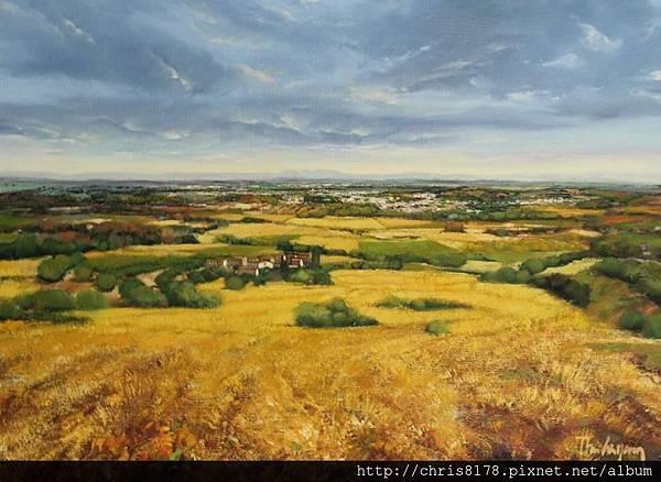10878_Toni Cassany_ART2016_3_Estiu a la plana empordanesa_73x50cm_Oil on canvas_2015.jpg