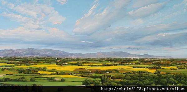 10878_Toni Cassany_ART2016_9_Pla fins a Roses_100x50cm_ Oil on panel_2015.jpg