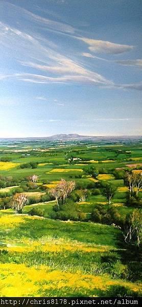 10878_Toni Cassany_ART2016_8_La plana del Montgrí_120x60cm_Oil on canvas.jpg