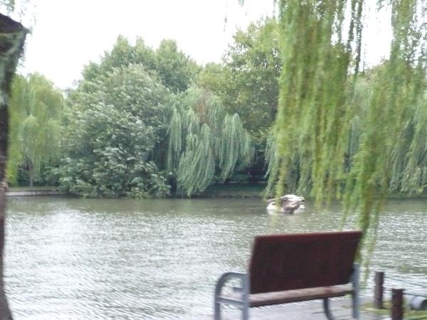 2008 杭州西湖 070.jpg