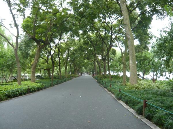 2008 杭州西湖 103.jpg