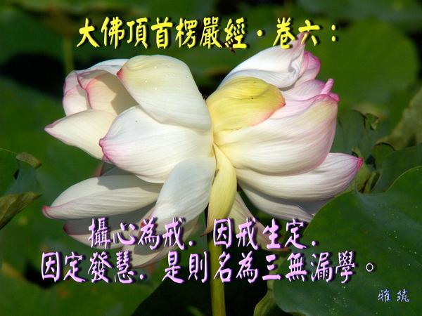 f_6590021_1.jpg