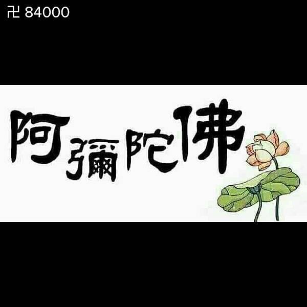 wp-1485201925057.jpg