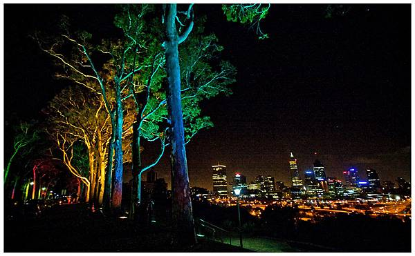 King's Park的夜景