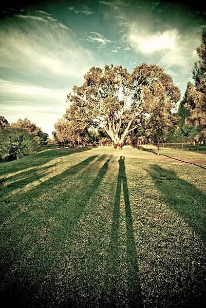 美麗的影子